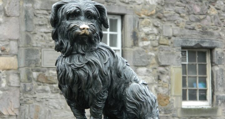 statua del cane George