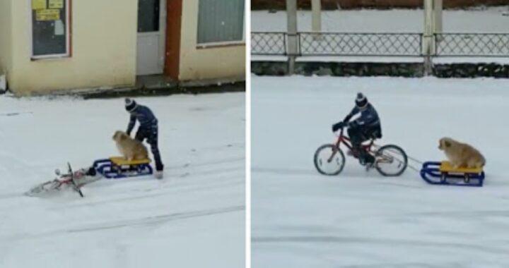 La clip virale del piccolo Andrei con il suo cane Pufi: hanno ricevuto anche un regalo