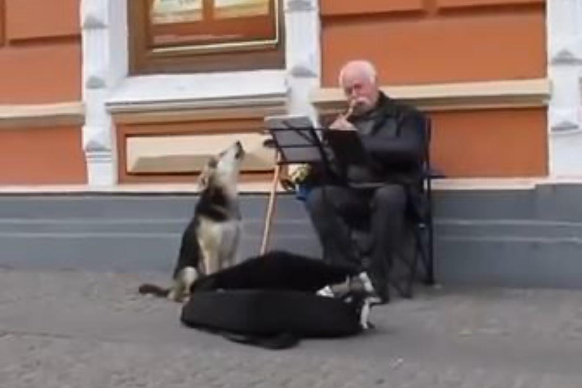 randagio musicista