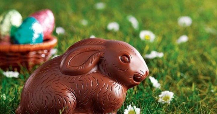 Il modo in cui mangi il coniglio di cioccolato rivela la tua personalità