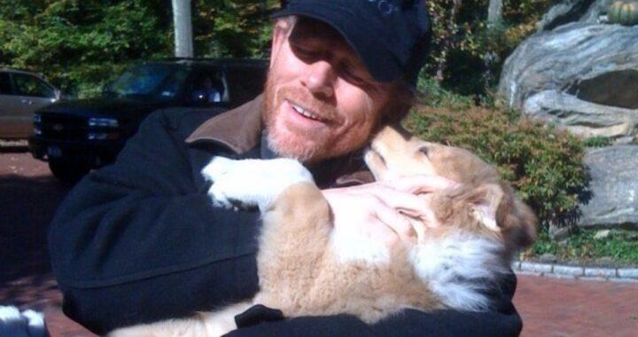 Il regista dice addio al cane Cooper