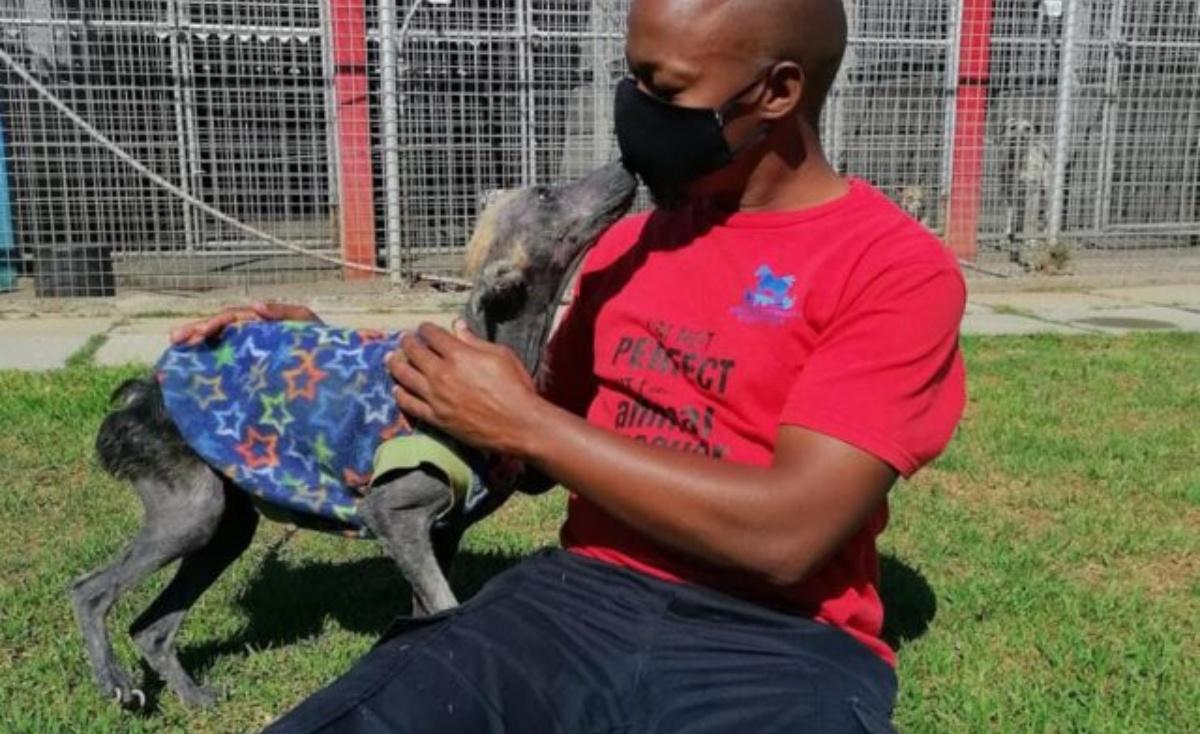 La storia del cane Kuhle