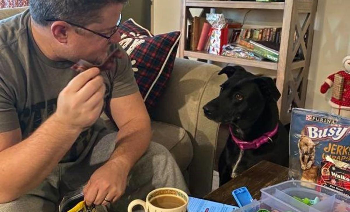 Marley, cane eroe salva la famiglia