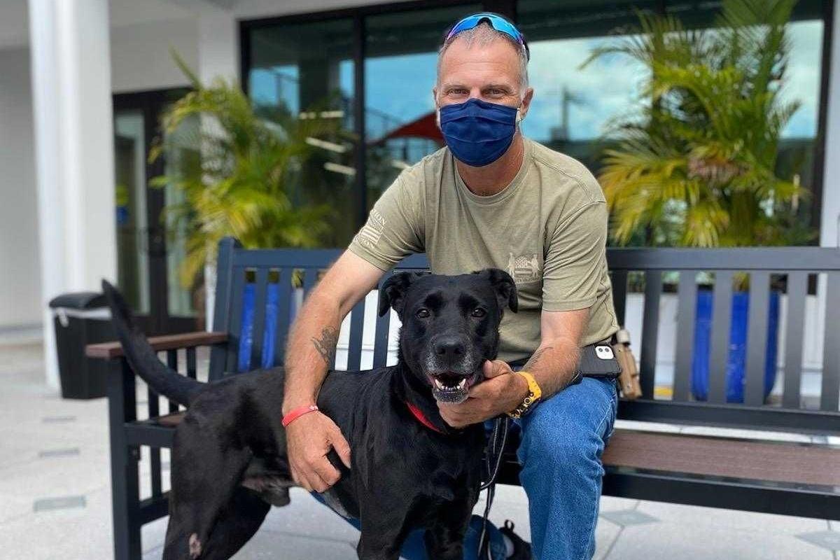 Quando il veterinario ha operato Serge, ha trovato un proiettile nel suo addome