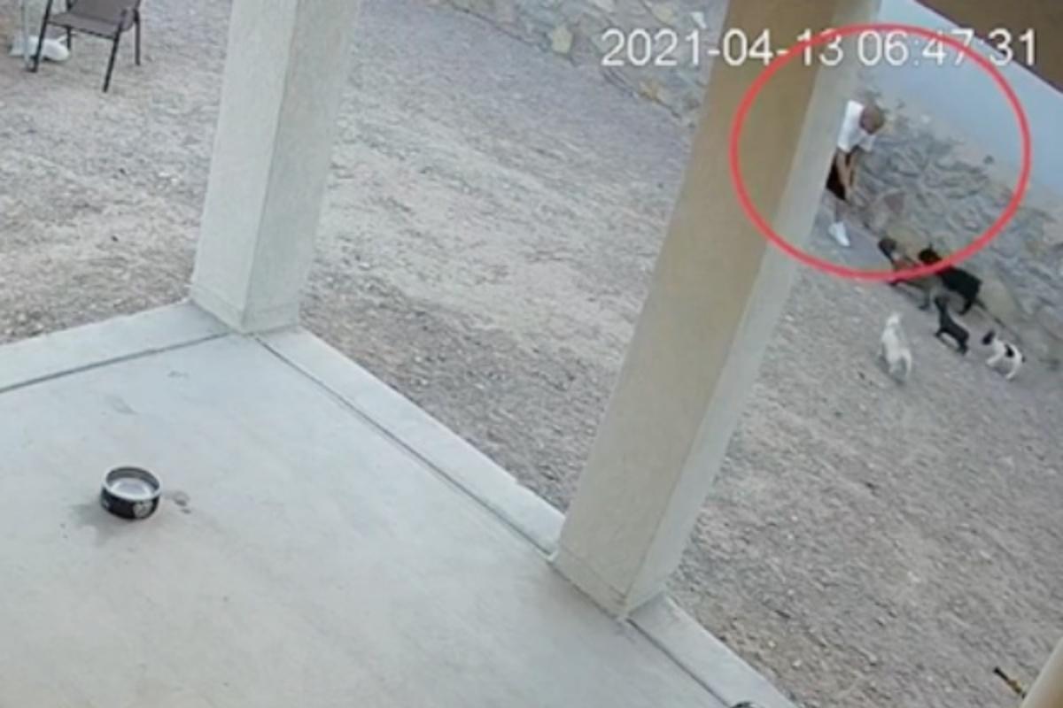 Le telecamere riprendono un malintenzionato dell'atto di rapire Stella