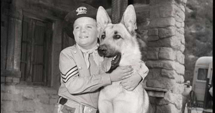 Lee Aaker, morto l'attore di Rin Tin Tin: era Rusty