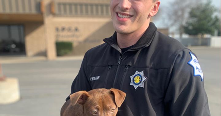 Poliziotto interviene per salvare un cane dai maltrattamenti del suo amico umano ed ecco cosa decide di fare