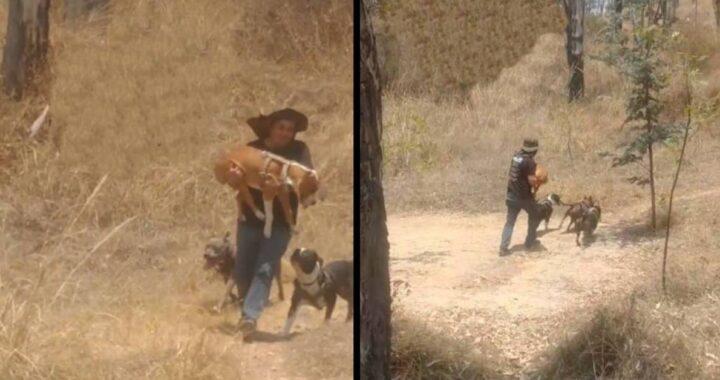 uomo corre con il cane