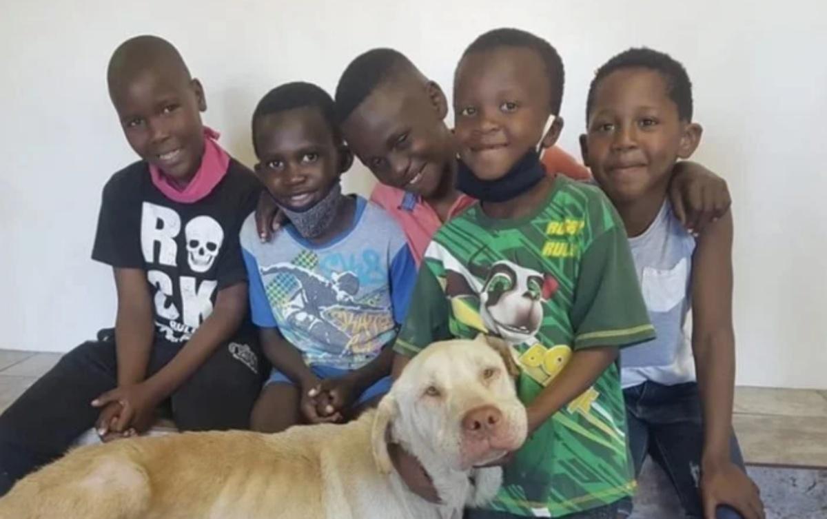 5 bambini salvano la vita del povero Champ
