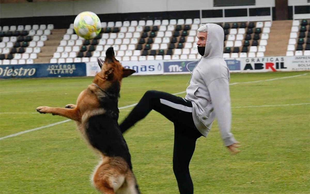 Jara, la cagnolina star del calcio