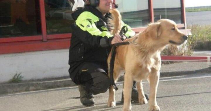 Addio al cane Lucky