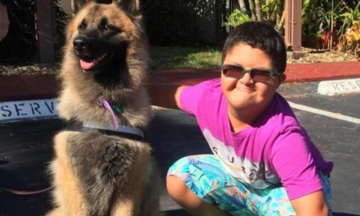 Sasha un cane eroe