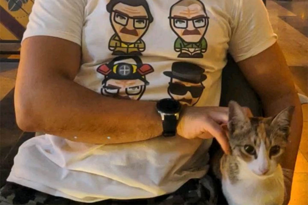 Sophie kitten documents.openideo.com: Kylie
