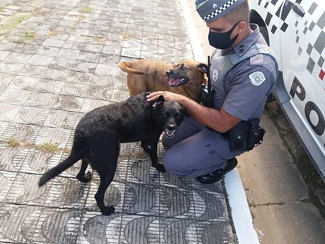 Polizia interviene
