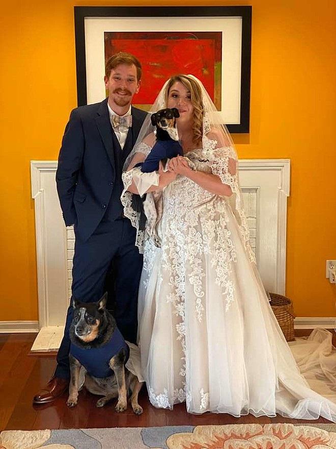 Matrimonio con i cani