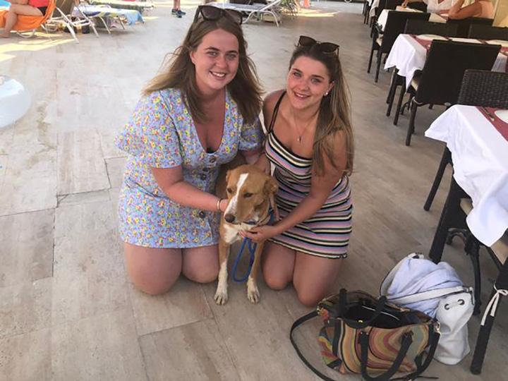 Lucy e il suo cane