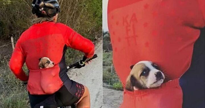 Ciclista viene ripresa mentre pedalava con un cucciolo in tasca, la spiegazione è inaspettata