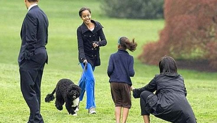 Il cane alla Casa Bianca