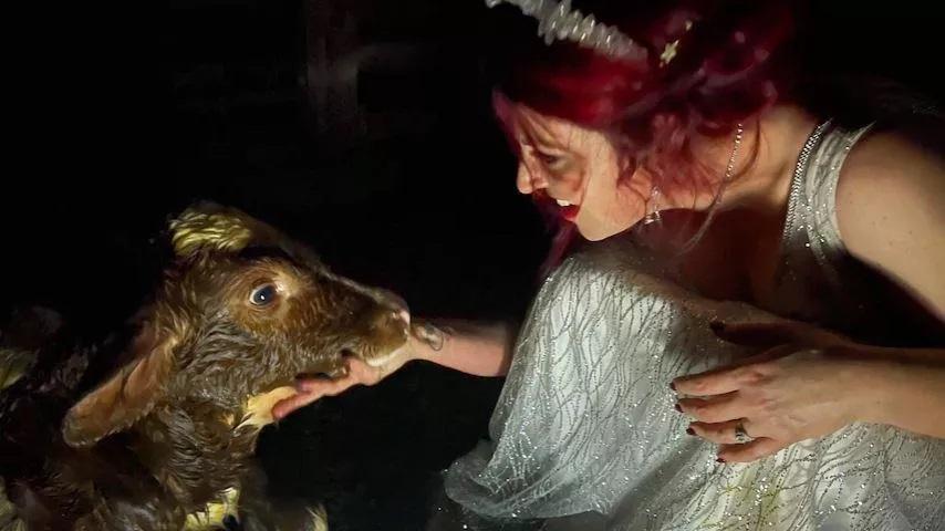 Jessa Laws e il vitellino