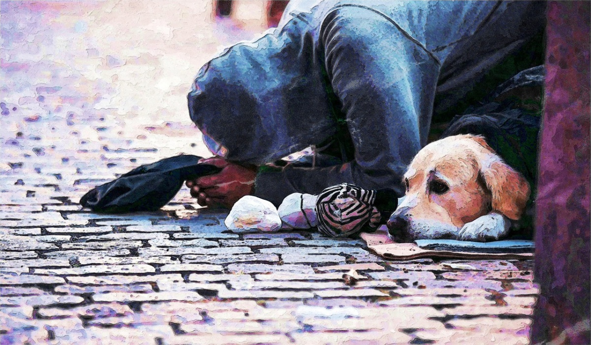 Donna aggredita dal cane di un senzatetto