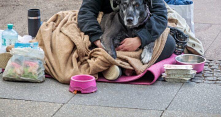 Senzatetto litiga per strada con una donna: il cane lo difende azzannandola. Residenti preoccupati