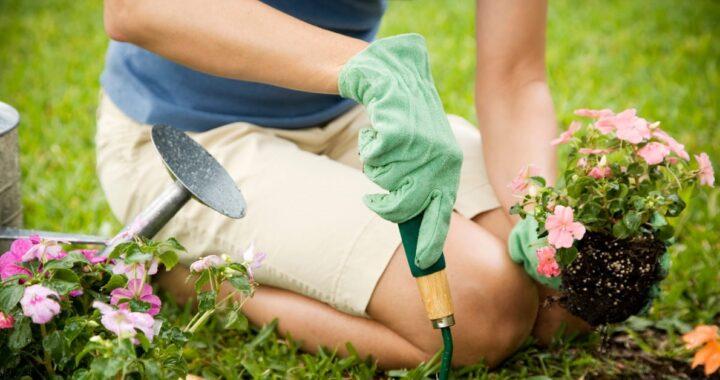 I 7 attrezzi migliori che gli amanti del giardinaggio devono assolutamente avere