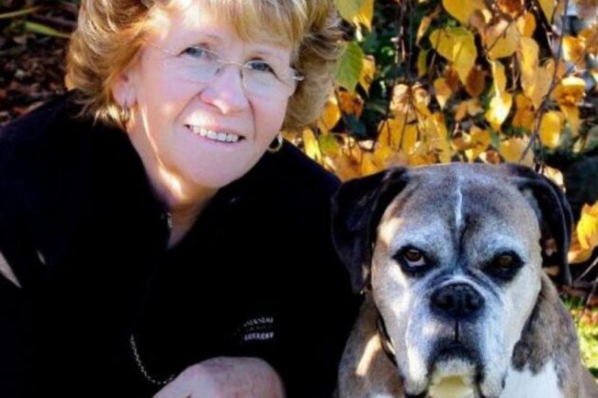 La fondazione dedicata ad Hannah dedicata a tutti i cani orfani