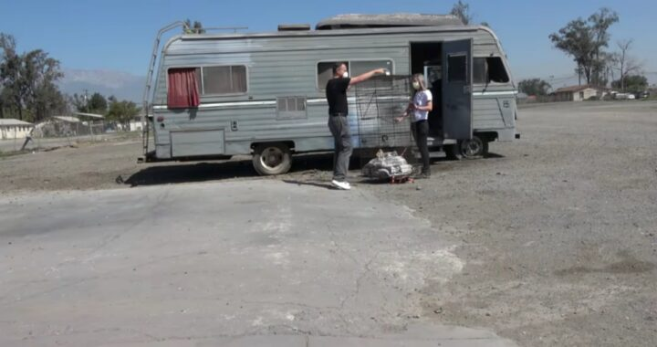Abbandonato dal suo proprietario, Klaus si rifiutava di lasciare la sua roulotte