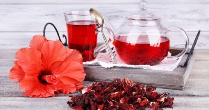 Tè all'ibisco, tutti i benefici sulla salute