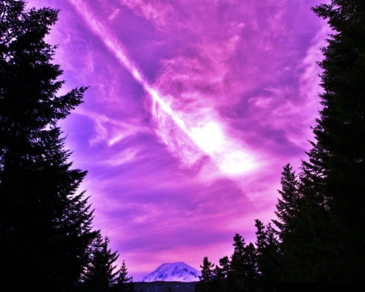 paesaggio di colore viola