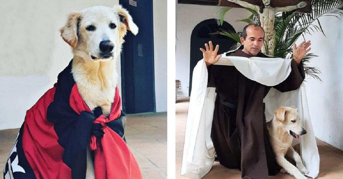 Cagnolino distrugge le vesti del prete