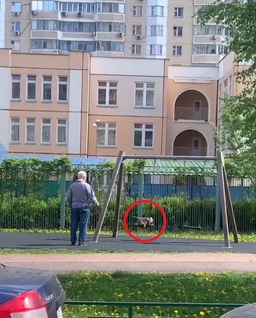 parco giochi in Russia