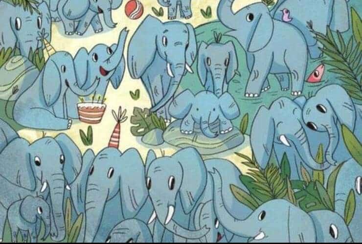 Trova l'orfano tra gli elefanti