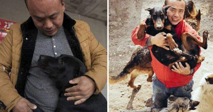 Wang Yan, il miliardario che ha trasformato l'allevamento di carne di cane in un rifugio