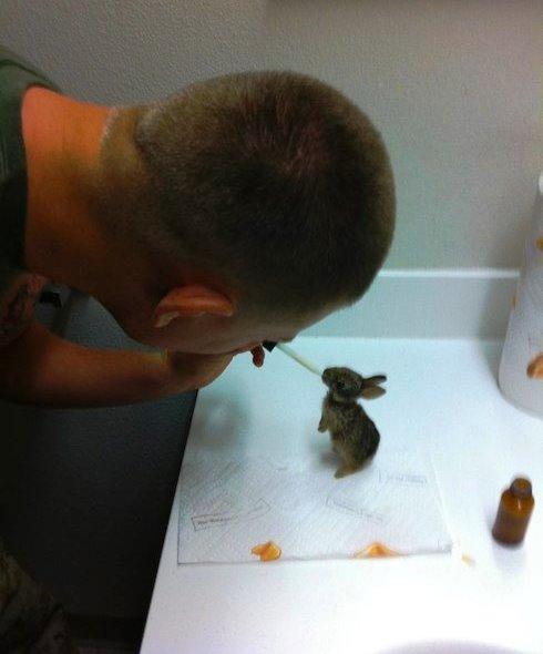Joshua e i coniglietti