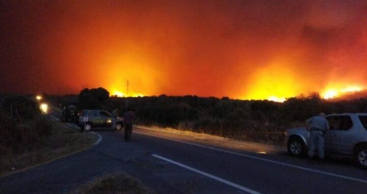 Incendi Sardegna: dichiarato lo stato d'emergenza. Ecco gli ultimi dati