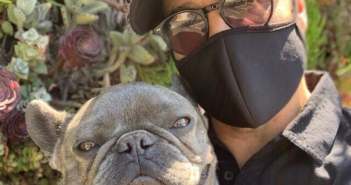 Il noto attore Jeremy Piven ha condiviso il suo dolore sui social, dopo la perdita del suo bulldog