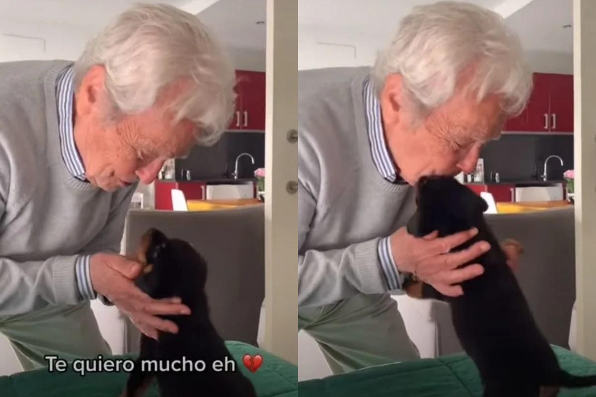 Amore a prima vista tra un nonnino e la cagnolina Kalma