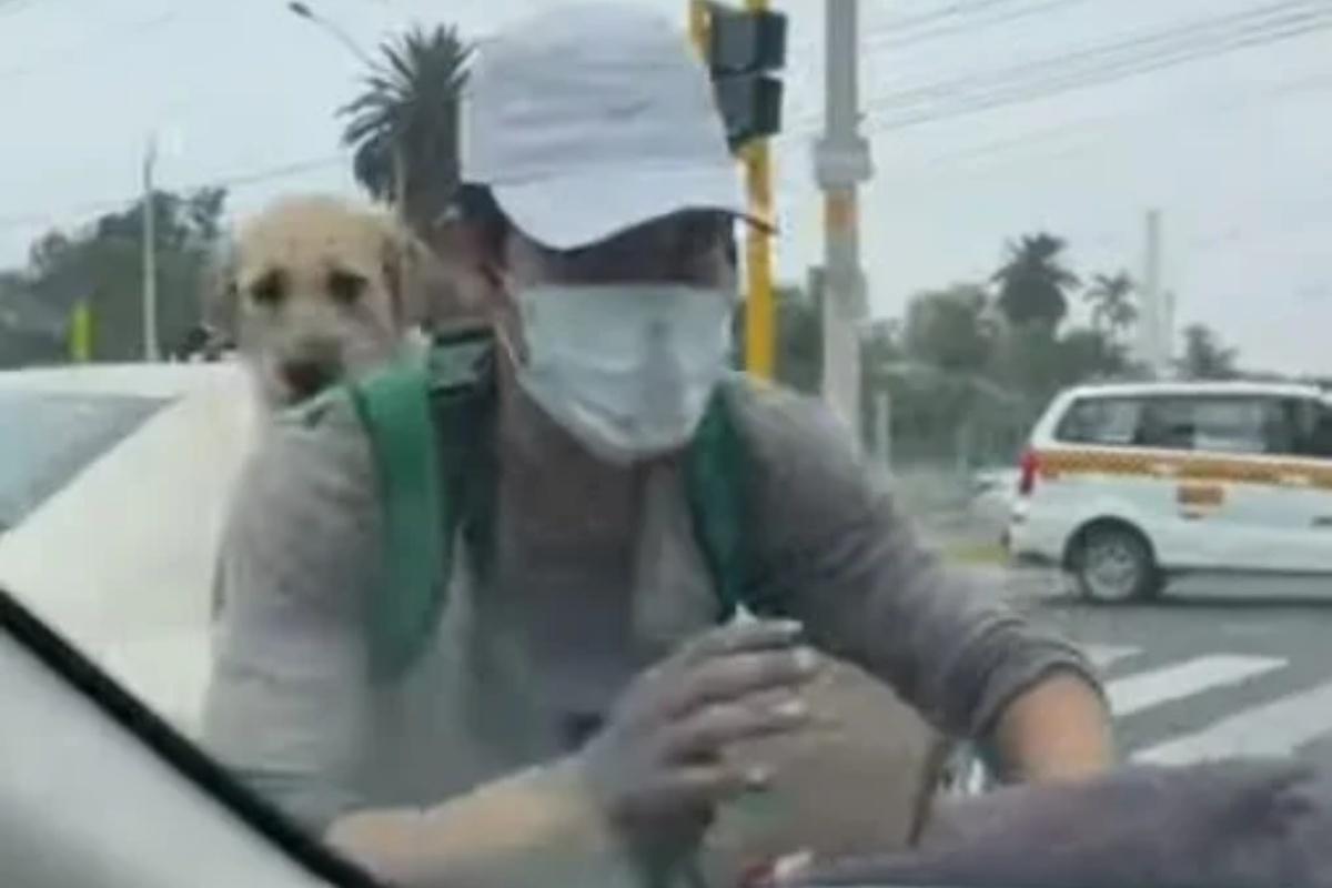 Lavavetri porta con se a lavoro il suo cucciolo