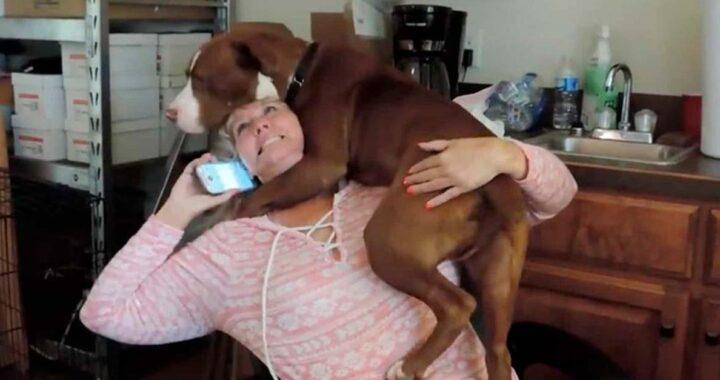 Cucciolo abbraccia la donna