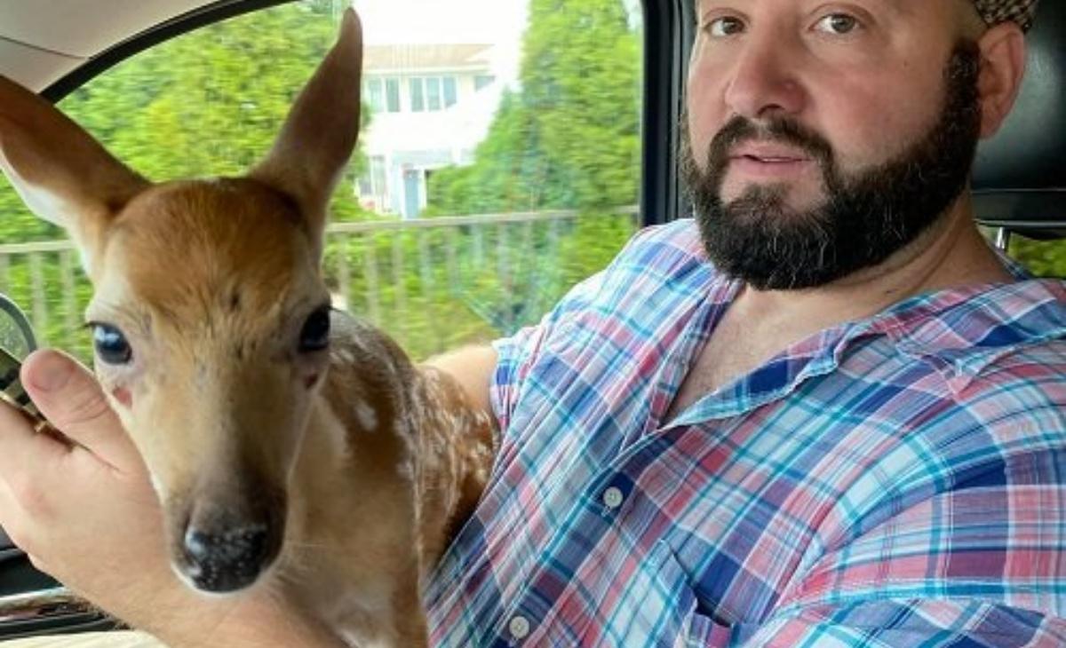 Il salvataggio del cucciolo di cervo