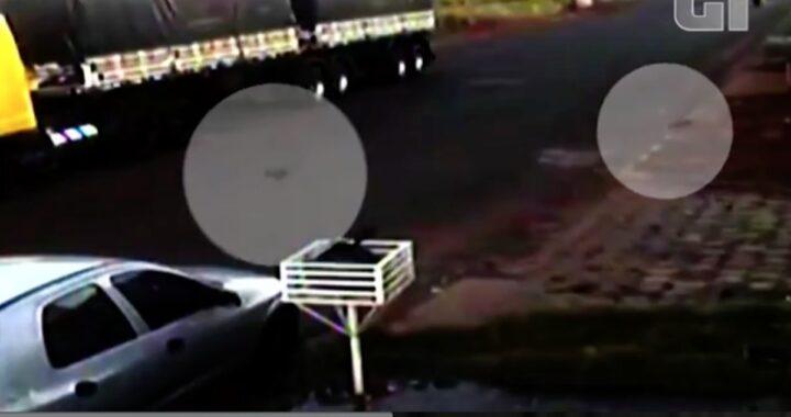 Il video dei due cuccioli abbandonati