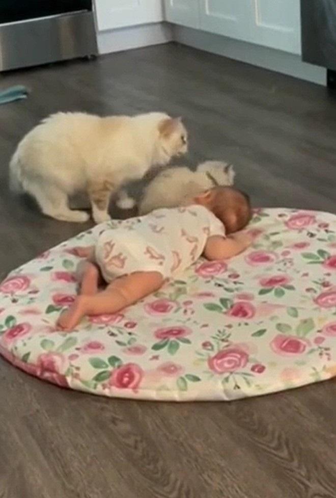 interagire con il neonato