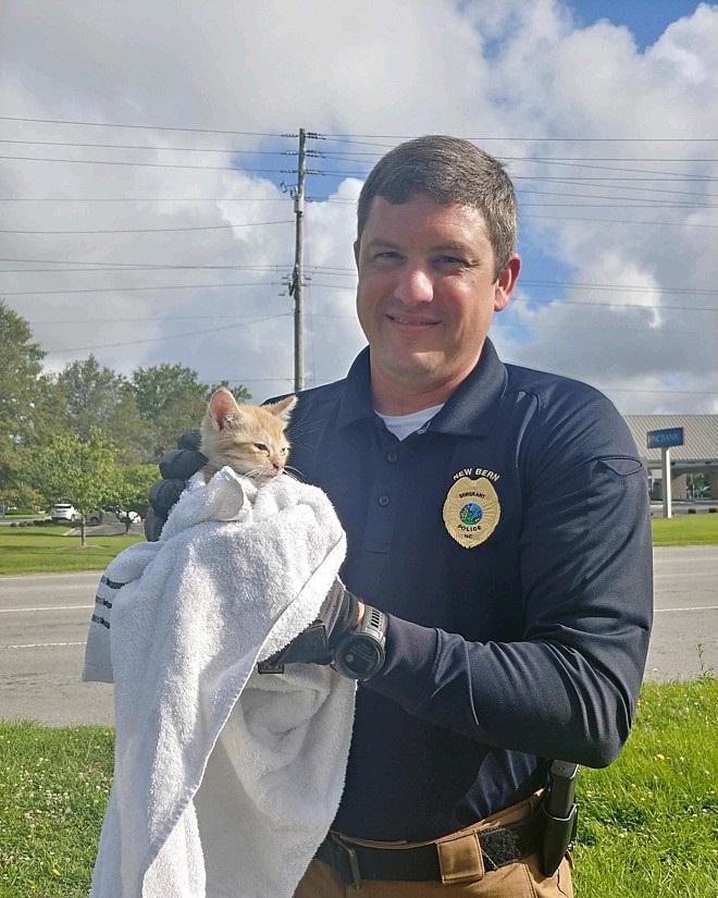 Polizia e gatto salvato