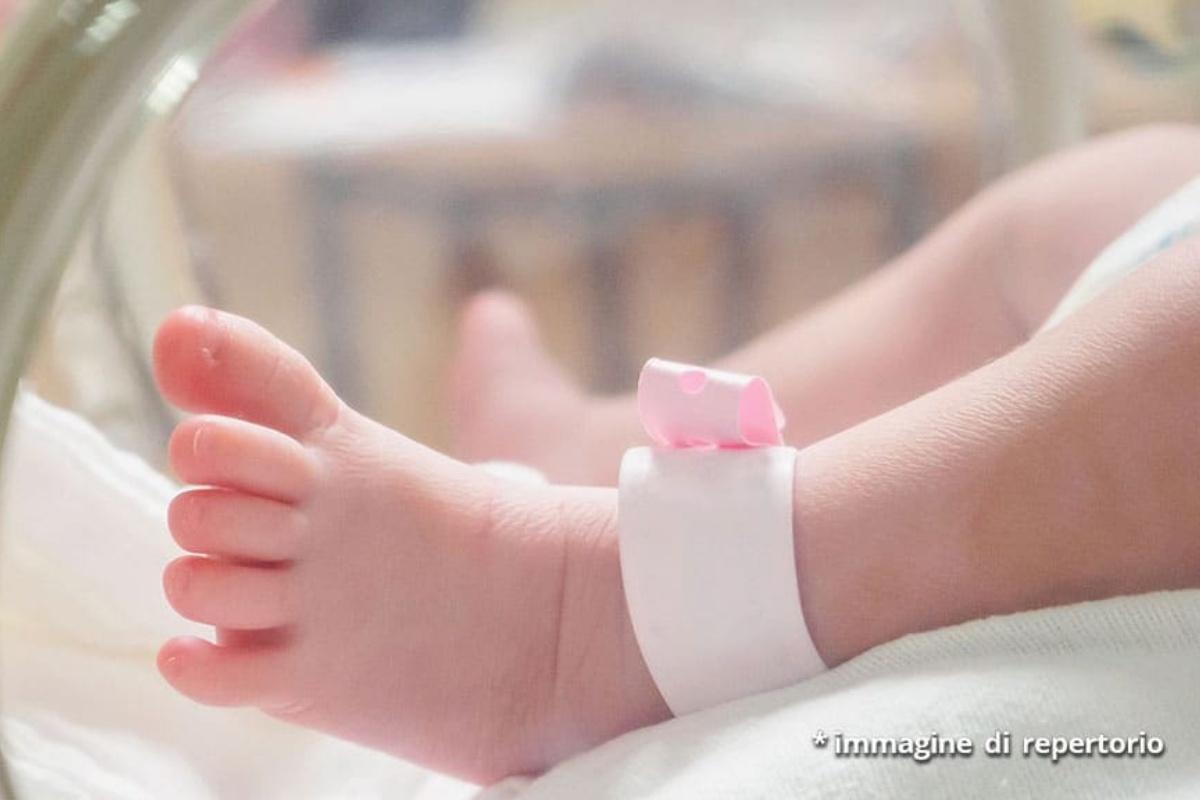 neonata prematura morta