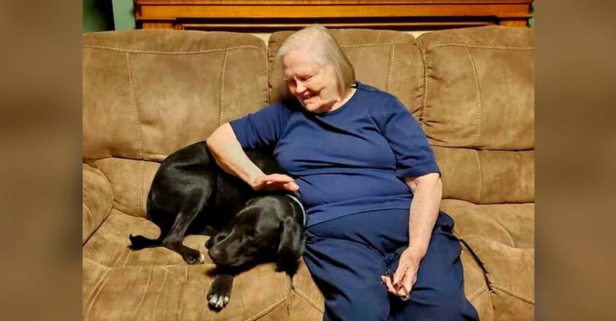 Nonna viva grazie al cane