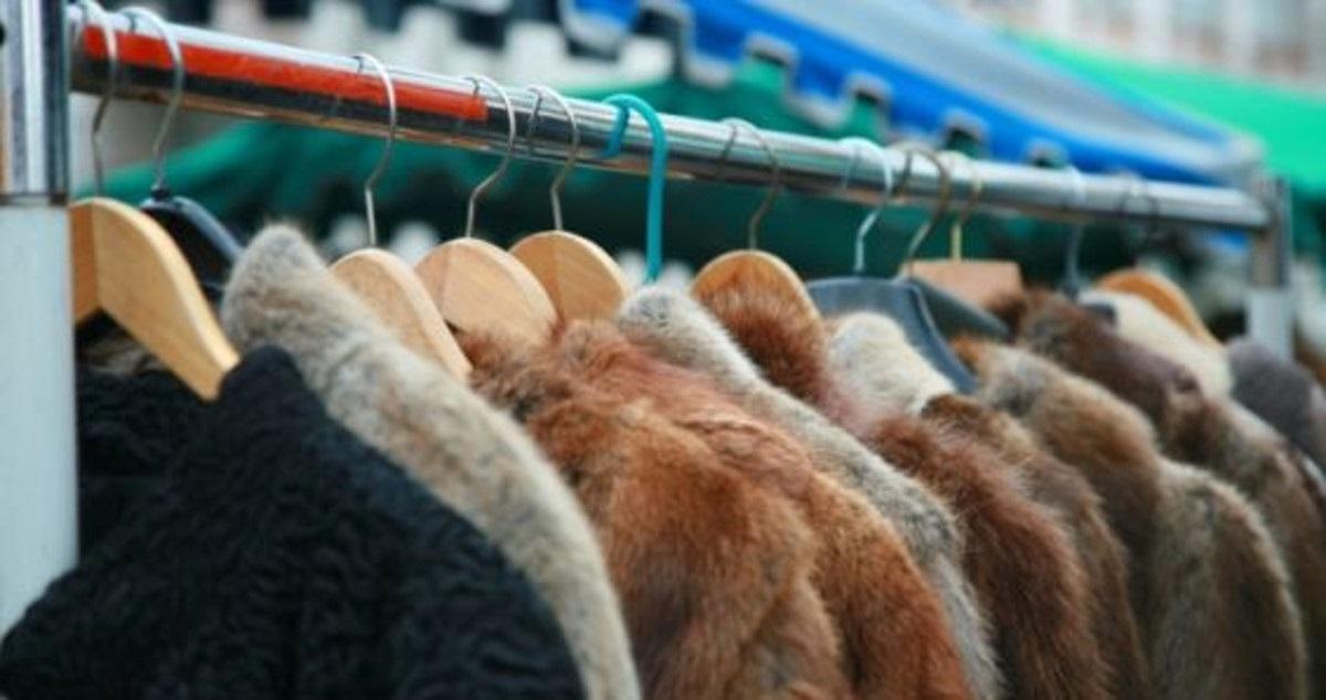 pellicce vietato ad israele
