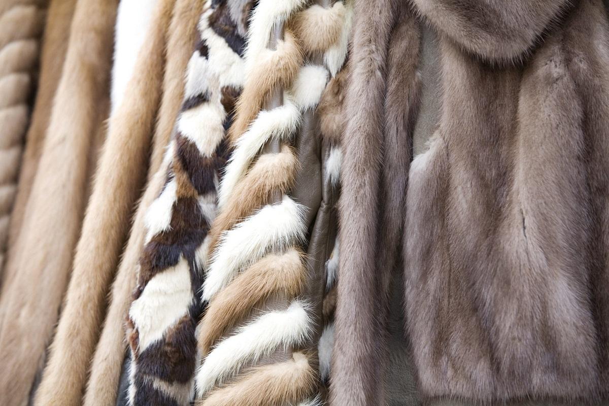 uso di pellicce vietato