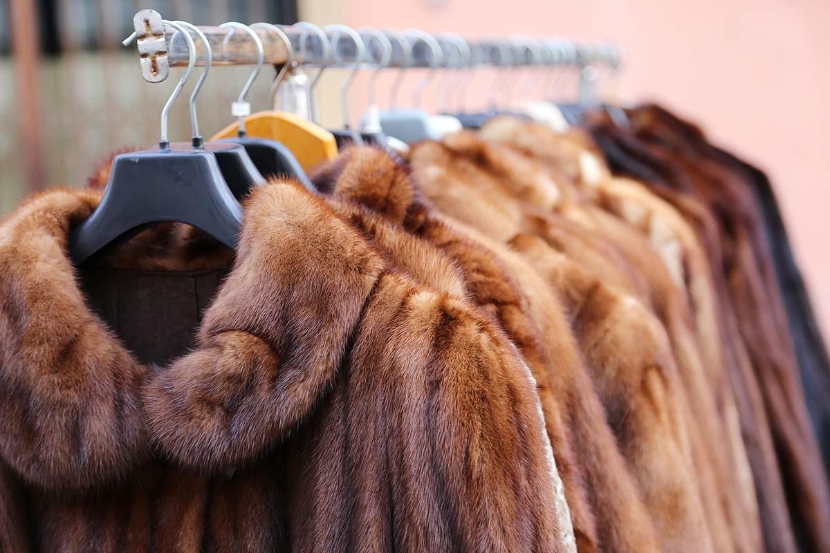 allevamento animali da pelliccia
