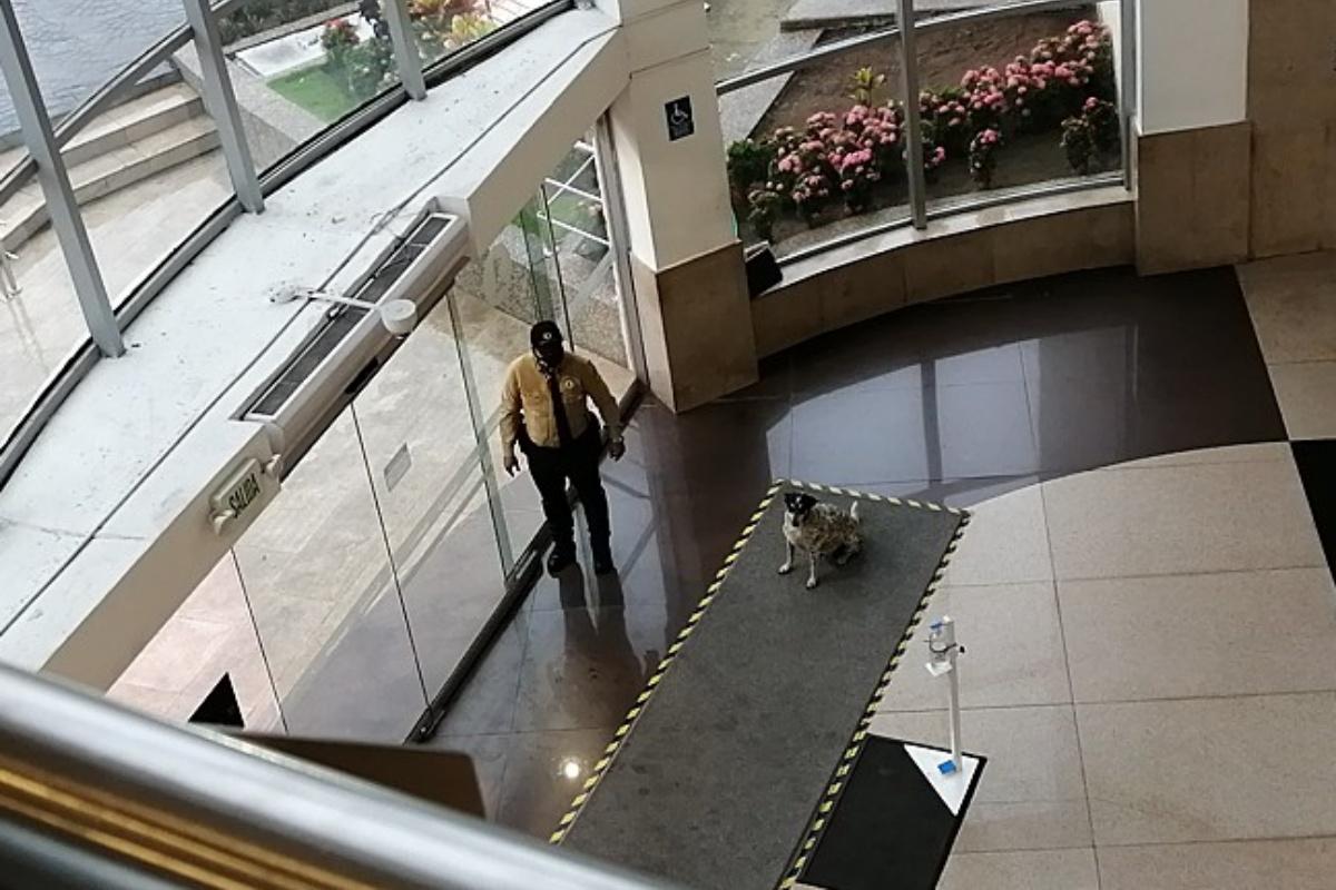 Guardia di sicurezza porta al riparo Manchas